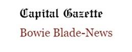 Bowie Blade mast